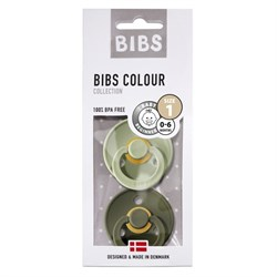 Bibs Colour İkili Emzik - Sage / Hunter Green